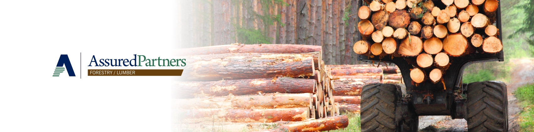 Insurance for forestry companies, forest insurance, forestry insurance, insurance for lumber companies